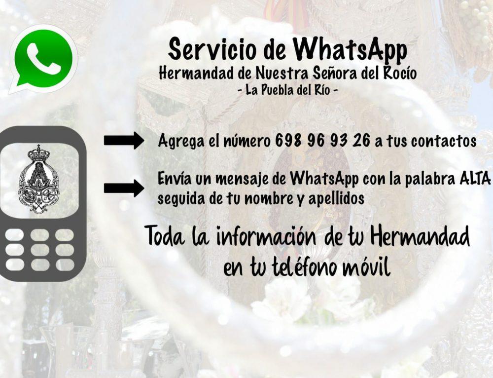 Canal de WhatsApp Informativo